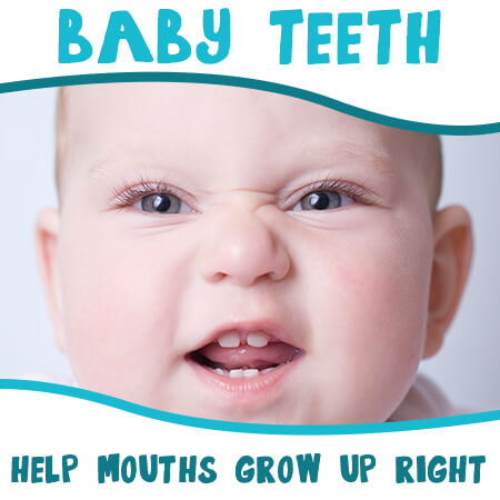 How Baby Teeth Help Mouths Grow Up Right